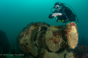 Lennos wreck for KQ heritage centre (3)